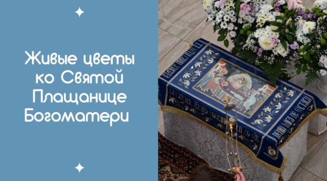 Принимаем пожертвования на живые цветы ко Святой Плащанице Богоматери